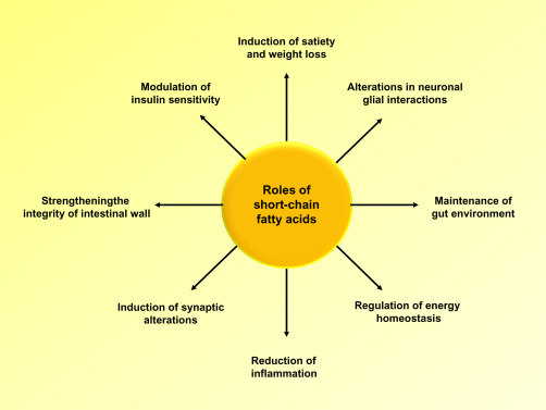 Benefits of short chain fatty acids