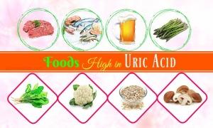 high uric acid foods