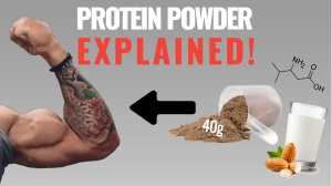 Protein powder muscle
